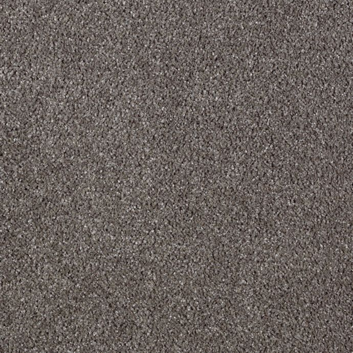 Modern Vision Dried Peat 9869