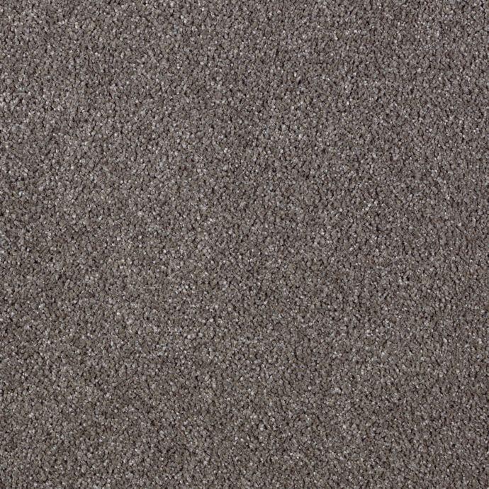Modern Vision Dried Peat 9869