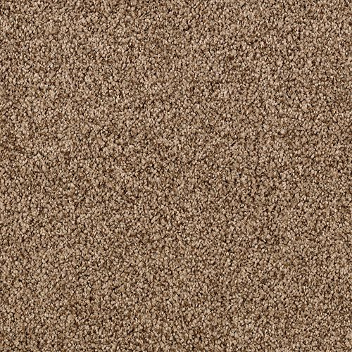 Mohawk Industries Summer Bliss Oyster Shell Carpet