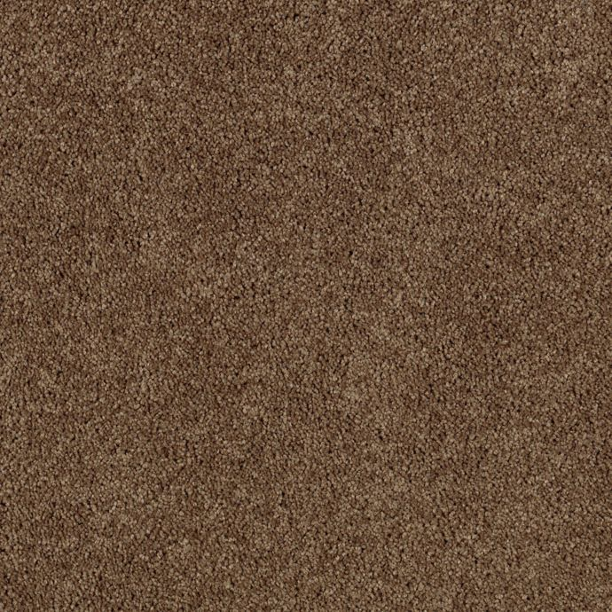 Luxurious Appeal Canvas Rust 9898
