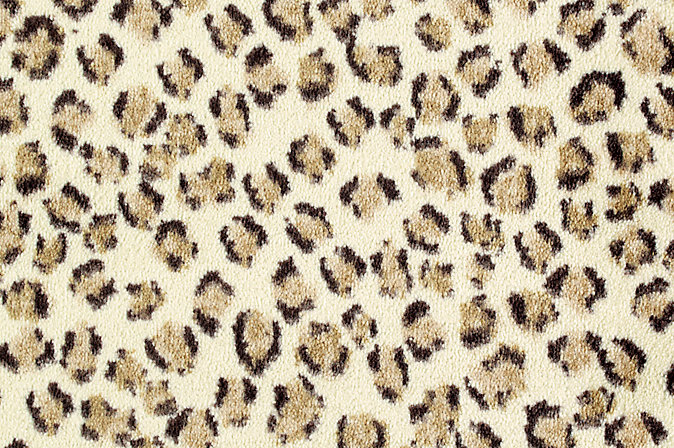 Savanna Scenes Cheetah