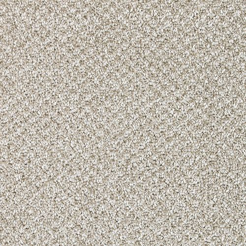 Carpet CascadeViews 70927-9918 Polaris