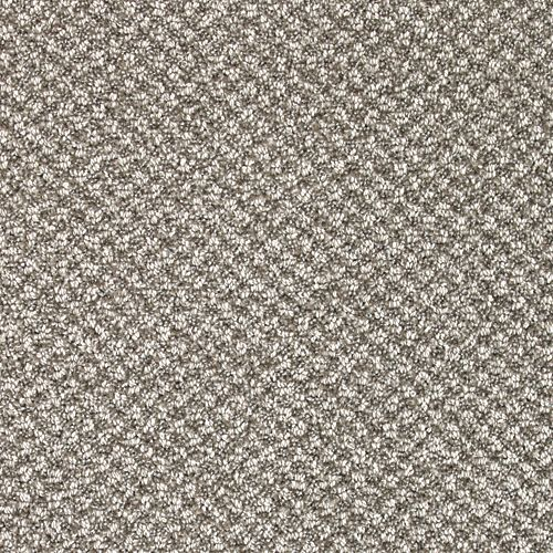 Carpet CascadeViews 70927-9968 Thunder