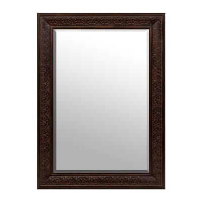 Tortoise Framed Mirror, 32x44