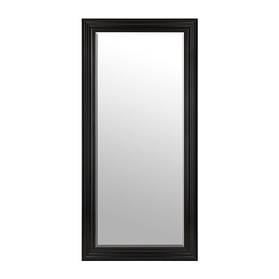 Dark Bronze Framed Mirror, 32x66