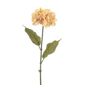 Cream Hydrangea Floral Stem