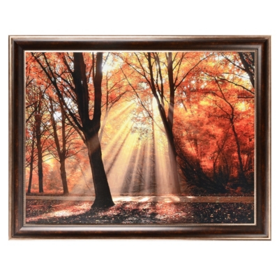 Dressed To Shine Framed Art Print