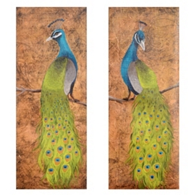 Peacock Canvas Art Print, Set of 2