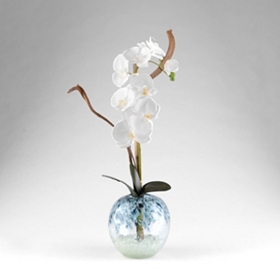 Orchid Glass Swirl Floral Arrangement