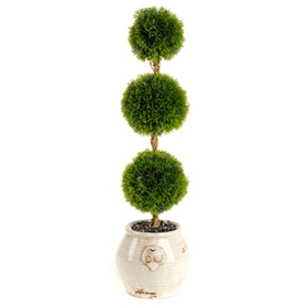 Cedar Triple Ball Topiary, 28 in.