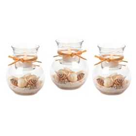 Seashell Filled Tealight Holder, Set of 3