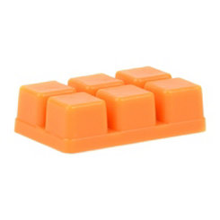 Orange Fizz Wax Melts