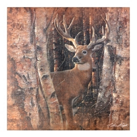 Birwood Buck Canvas Art Print