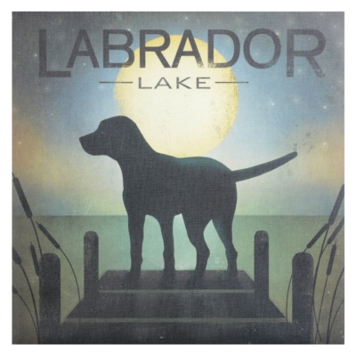 Labrador Lake Black Dog Canvas Art Print