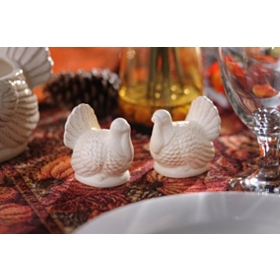 Salt & Pepper Turkey Shakers, Set of 2