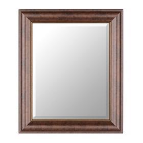 Bronze Classic Framed Mirror, 22x26