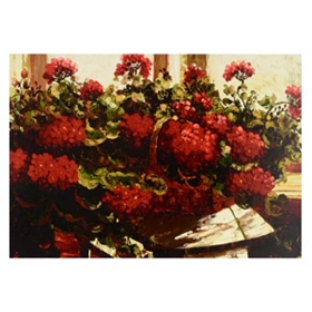 Geraniums Canvas Art Print