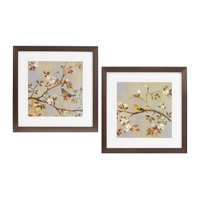 Sitting Songbirds Framed Art, Set of 2