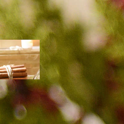Glass Pine & White Berry Candle Holder