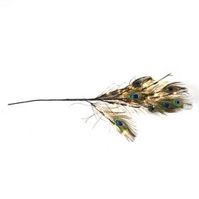 Pre-Lit Peacock Feather Branch
