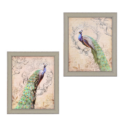 Vintage Peacock Framed Art Prints