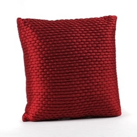 Red Zoe Pillow