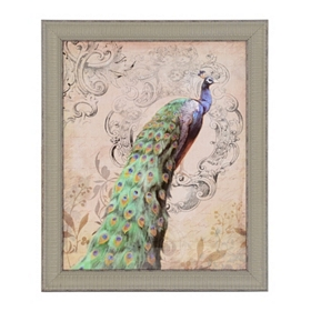 Vintage Peacock I Framed Art Print