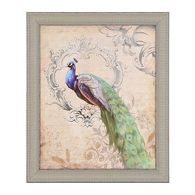 Vintage Peacock II Framed Art Print