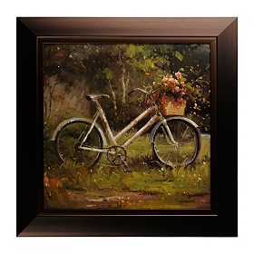 Bicycle Journey I Framed Art Print
