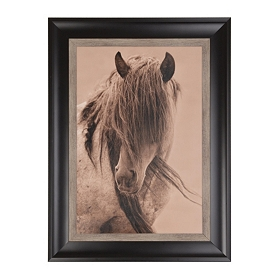 Freedom Horse Framed Art Print