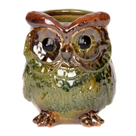 Green Ceramic Owl Planter