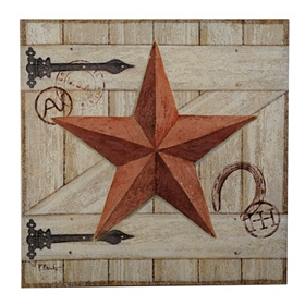 Rust Barn Star Canvas Art Print