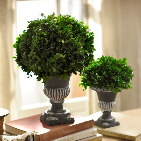 preserved boxwood topiary 17 in