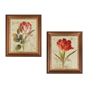 Garden View Framed Art Prints