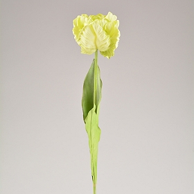 Green Ruffled Tulip Stems, 28 in.