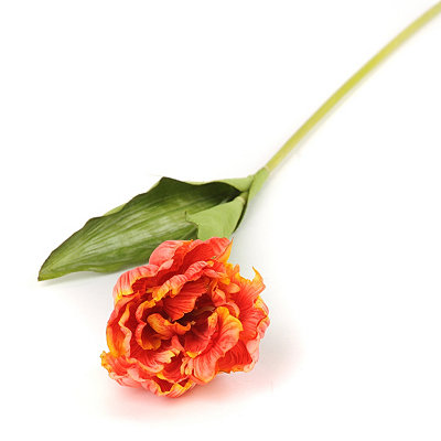 Orange Ruffled Tulip Stems, 28 in.