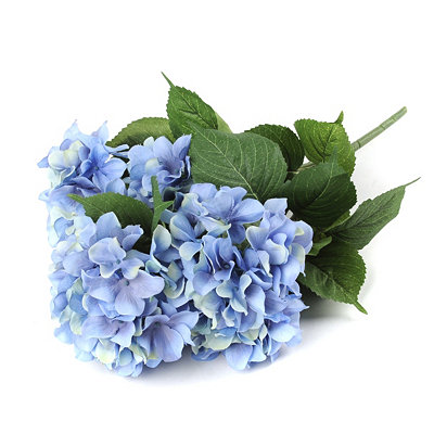 Blue Hydrangea Bush, 20 in.
