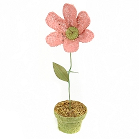 Purple Potted Burlap Daisy