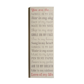 Love Of My Life Canvas Wall Plaque