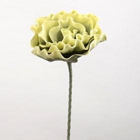 Green Cabbage Rose Stem