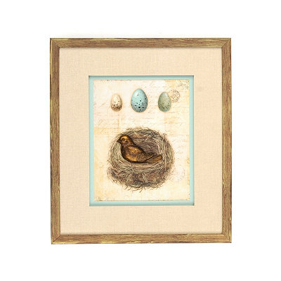 Spring Nest Shadowbox