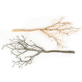 Coral Branch, 36 in.