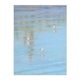 Sand Pipers on the Shore Giclee Canvas Art Print