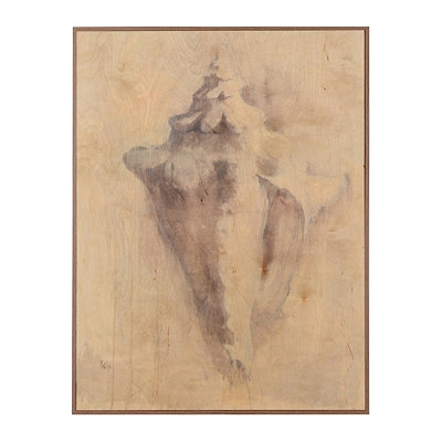Conch Shell Birchwood Art Print
