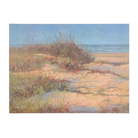 Day at the Sand Dunes Giclee Canvas Art Print