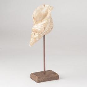 Coastal Shell II Statue