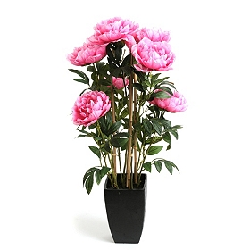 Pink Peony and Bamboo Arrangement