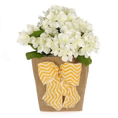 White Hydrangea Wall Pocket