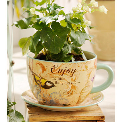 The Little Things Teacup Planter