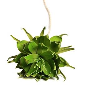Green Exotic Daisy Stem